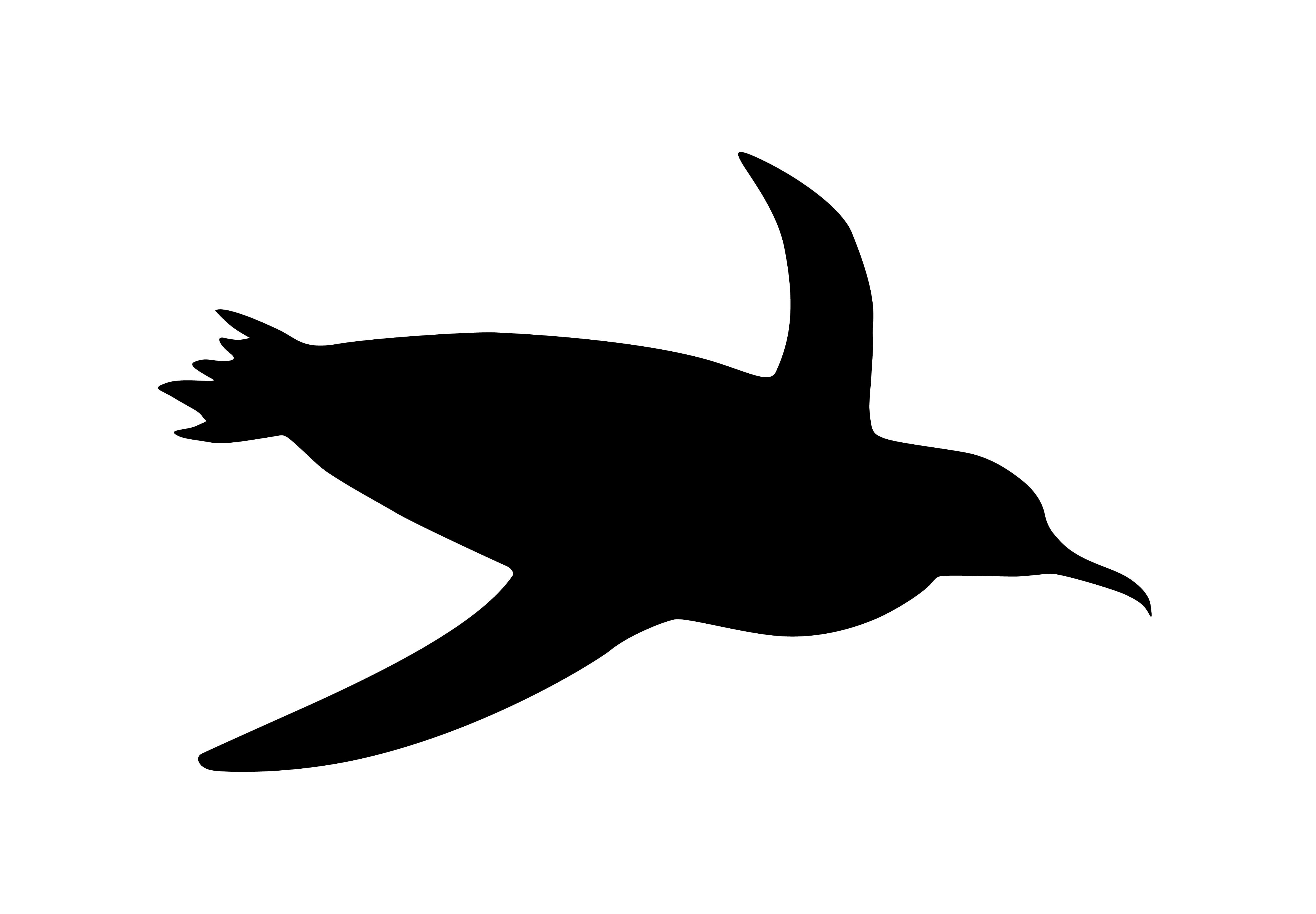 penguin swim - art & sea